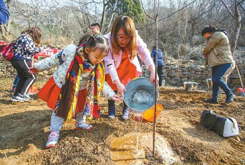 南山绿化树种不是简单问题 植什么树造什么林南山才更绿