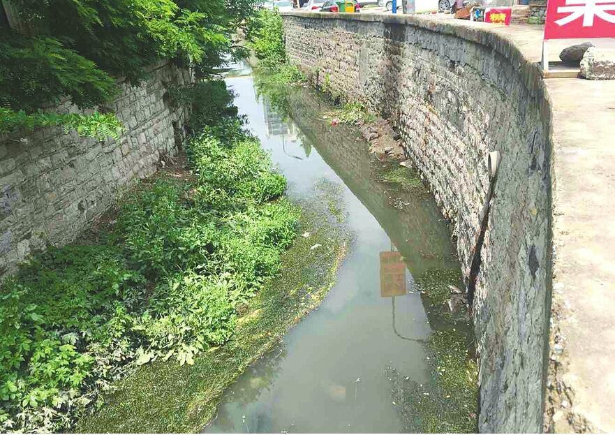 万盛大沟河水污染严重异味明显 严重影响附近居民的生活