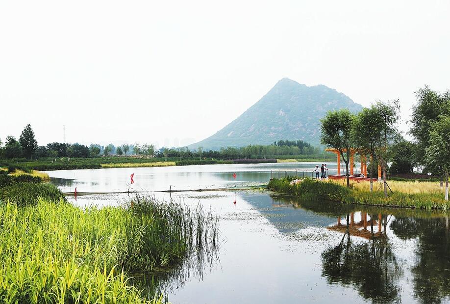 济南华山湿地初露芳容 总规划范围约6.25平方公里