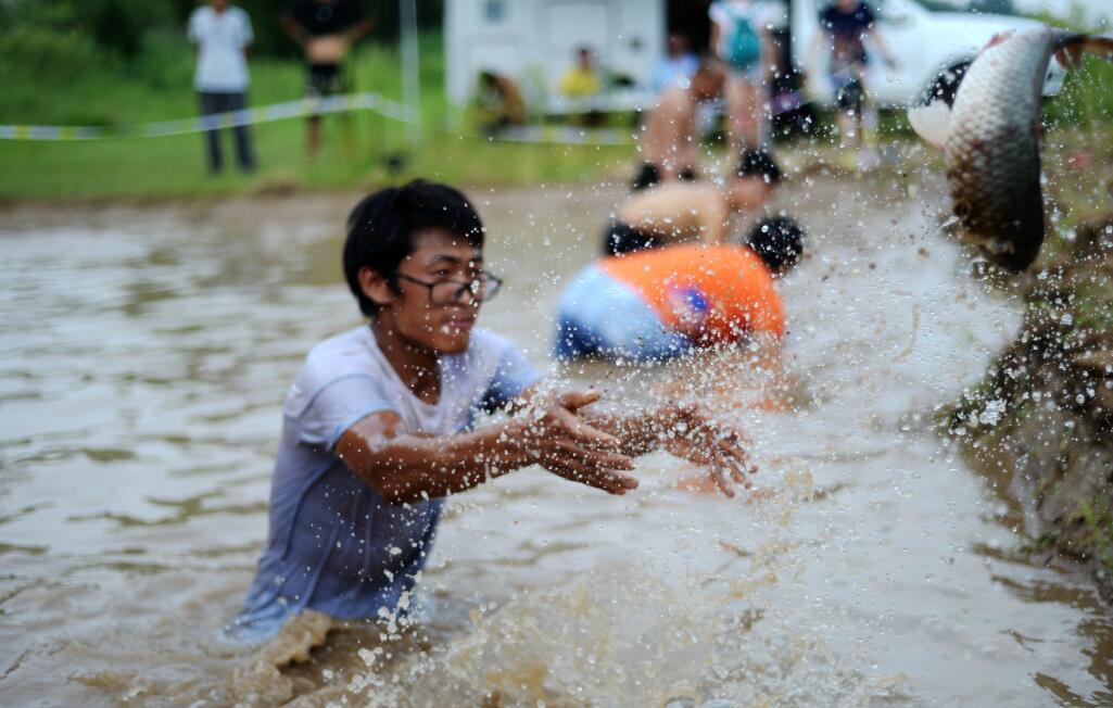 黄河休闲旅游节开场 体验帐篷露营百斤鱼儿等你摸