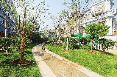 济南:拆违建新绿 扮靓泉城路