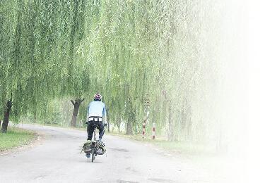 一位外地媒体人眼中的泉城:城市有温度 市民素质高