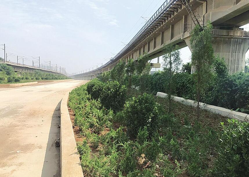 135处问题全部清零 市中铁路沿线:一步一景 一路绿装