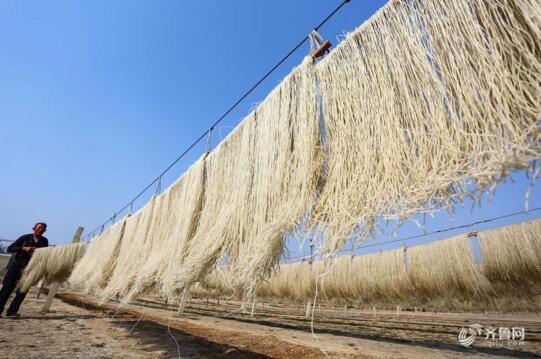 枣庄地瓜喜丰收 深加工后电商销售增值十几倍