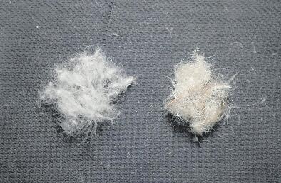 羽绒服价格从100元到2000元不等 违规添加羽丝已成公开秘密