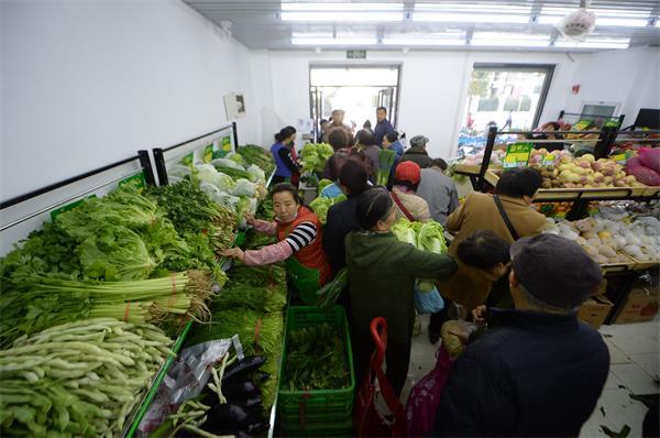 从地头直达社区超市 白菜每斤一毛五受热捧