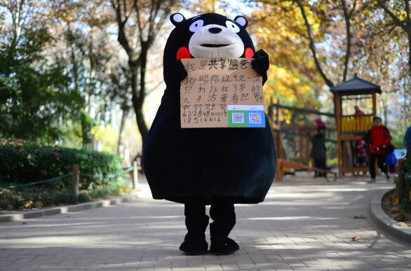 """济南:男子扮演""""共享熊爸爸"""" 为子筹集救命钱"""