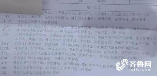 """济南清波路多条宠物犬接连""""中毒""""死亡 警方已介入"""