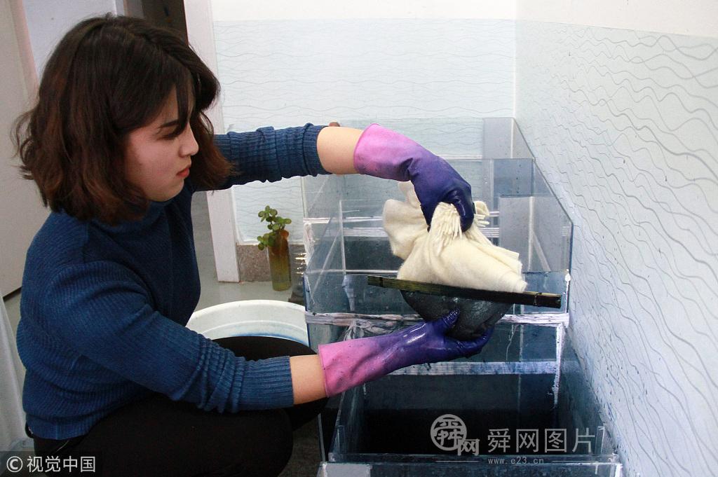 """山东威海:美女学霸校园开染坊 只为脱离""""啃老族"""""""