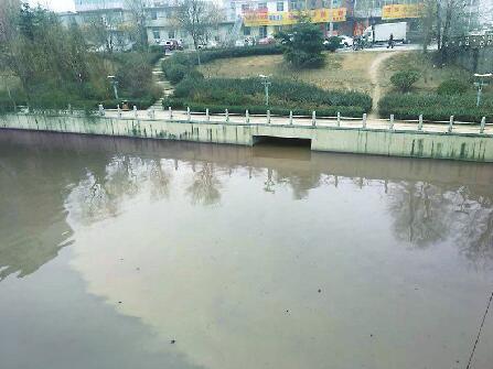 """污水排进小清河200米河段成""""黄河"""" 生活污水量超负荷所致"""