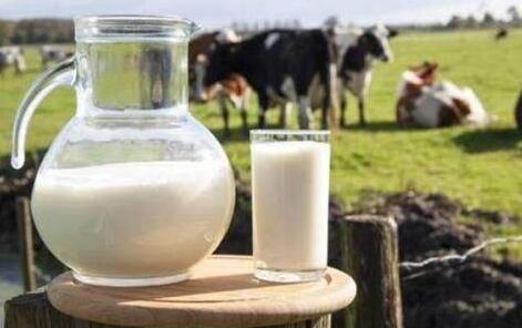 去年我国乳业消费复苏明显 未来市场仍面临多重压力