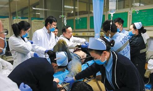 广州:四根钢筋贯穿工人胸腹部 医生抢救手术持续8小时