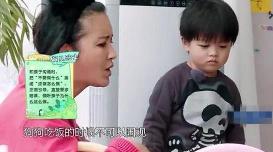张歆艺怒吼萌娃护狗心切  张歆艺袁弘参加育儿体验节目