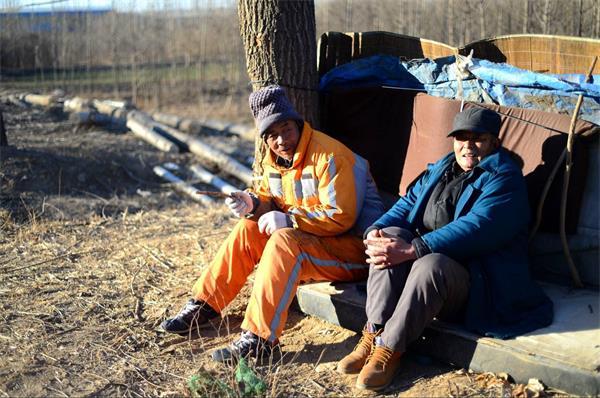 济南:环卫工自搭小窝棚 道路旁躲避风寒