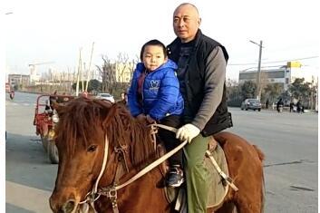 老爸骑马接儿子放学拉风帅气 限行限号限不住父爱如山