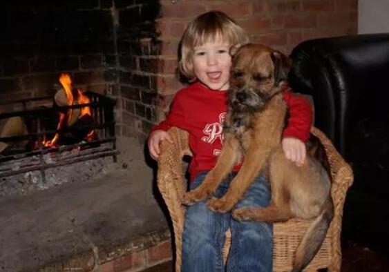 英国富翁重金悬赏寻找小男孩爱犬 自掏腰包花费8.8万元为男孩圆梦