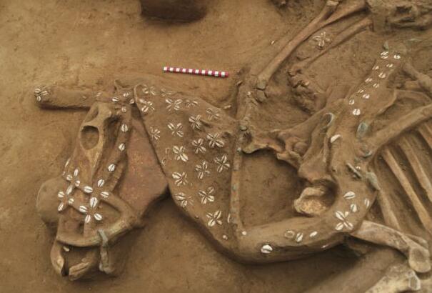 六大考古新发现:迁徙、冶铜、祭山神、雕玉器 先人们原来很忙的