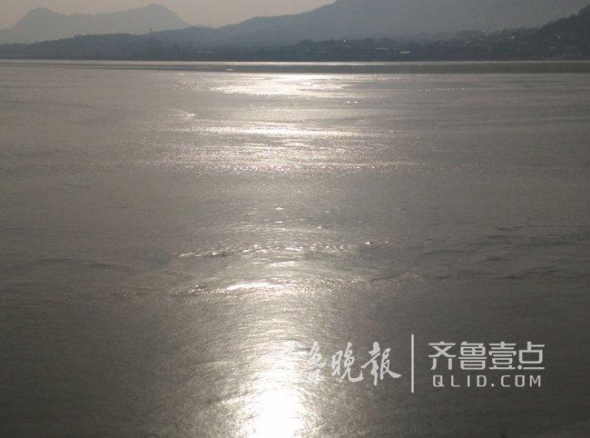 济南卧虎山水库湖面冰封 上千只野鸭冰面上围拢聚集甚是可怜