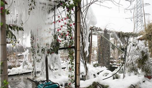 无锡大叔童心焕发 人工打造近3000平冰凌景观