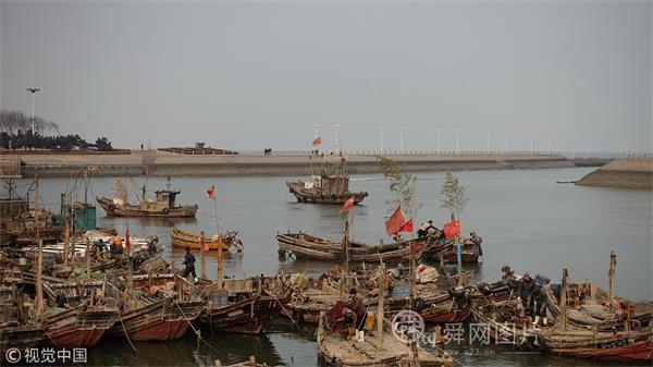 山东日照:临近春节渔民渔船桅杆上插竹子 期盼来年节节高