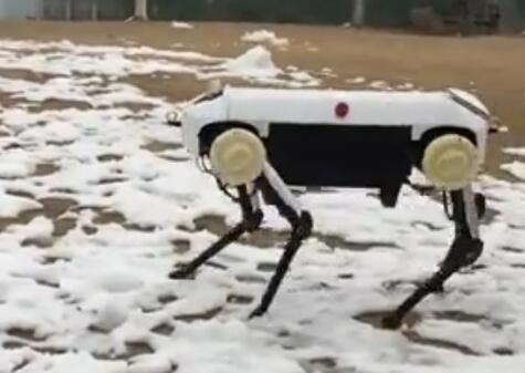 机器狗!浙大发四足机器人萌翻了 身长1米站立时60厘米高超厉害