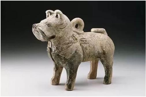 迎狗年庆中国年 汪星人就这样占领了海外博物馆