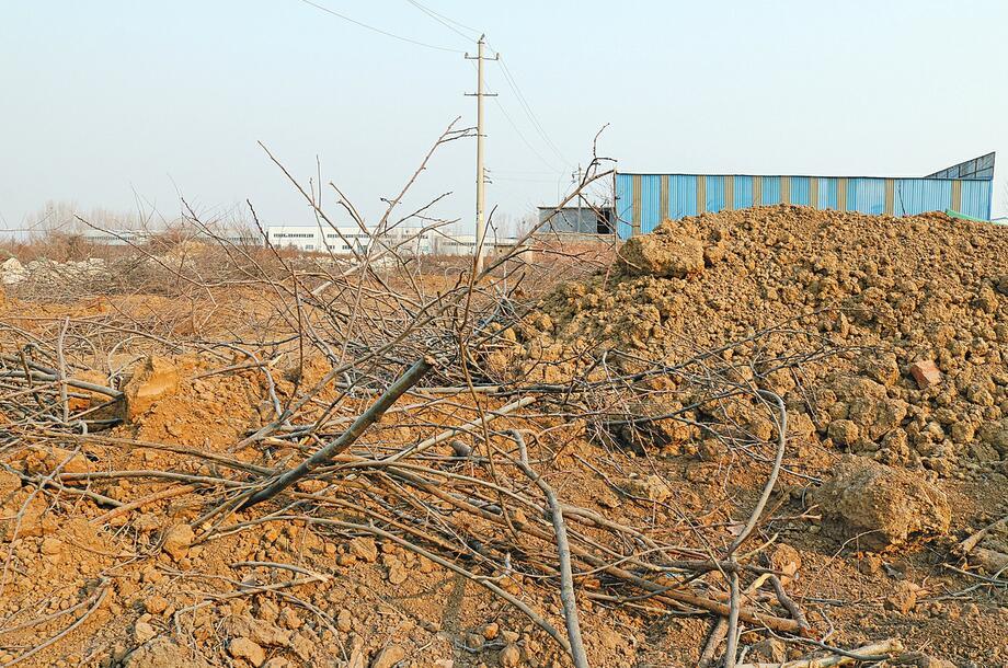 长清区大刘庄村南空地大量渣土裸露给附近带来扬尘隐患