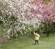 在济南,早春二月的几种玩法