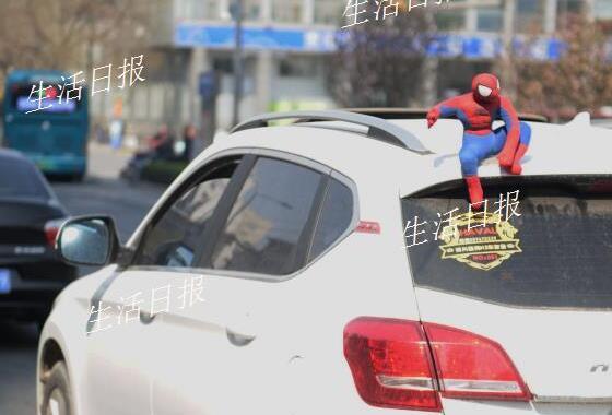 """济南交警开查车顶""""蜘蛛侠"""":掉下来真不是闹着玩的"""