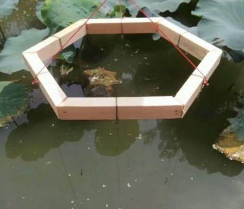 """农村爱好钓鱼的木匠工 自制六边形钓具达到""""一钓六飞""""的效果!"""