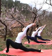 当十里桃花遇到瑜伽
