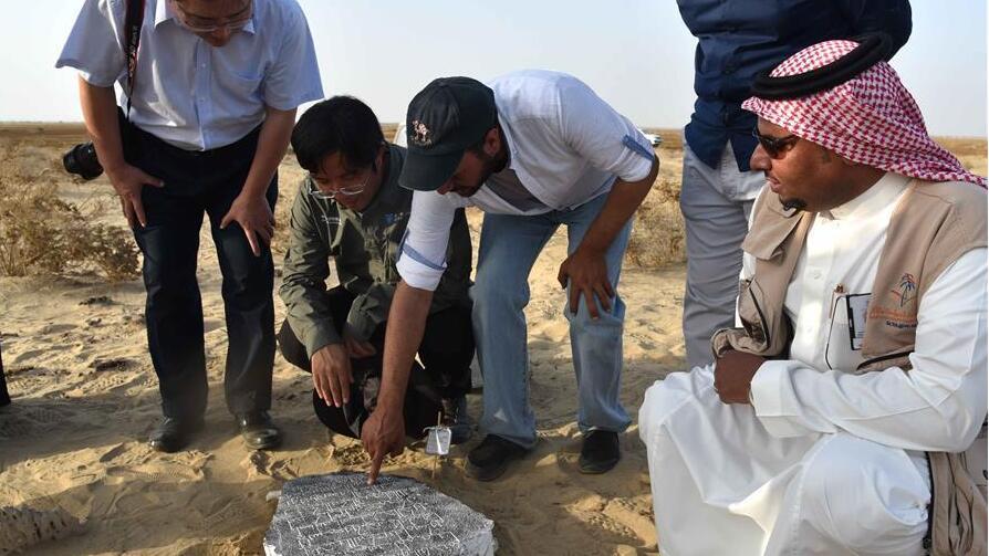 中沙考古队在沙特古港口遗址发现中国瓷片