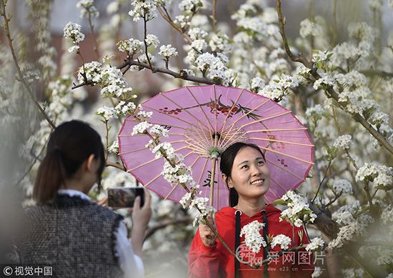 山东邹平:农场百花盛开灿烂缤纷 众多游客慕名而来