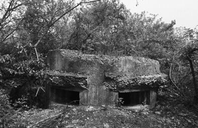 雨花台发现抗战碉堡遗迹 如今荒烟蔓草荆棘横斜