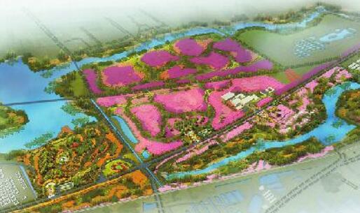 黄河冠世花园种植3万株樱花