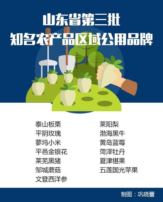 有你家乡特产吗?山东第三批知名农产品区域公用品牌亮相