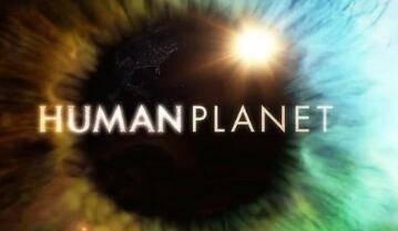 脑洞大开!BBC人类星球下架  造假丑闻:小岛居民木棍插鲸鱼