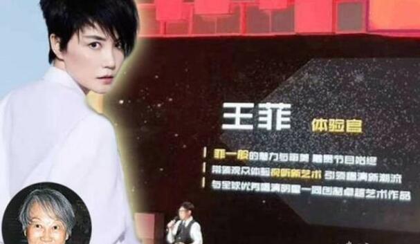 曝王菲真人秀酬劳是天文数字 湖...
