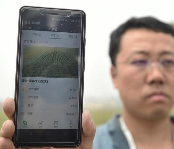 """山东邹平:""""智慧农业""""促发展"""