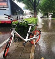 单车使用不文明被禁骑