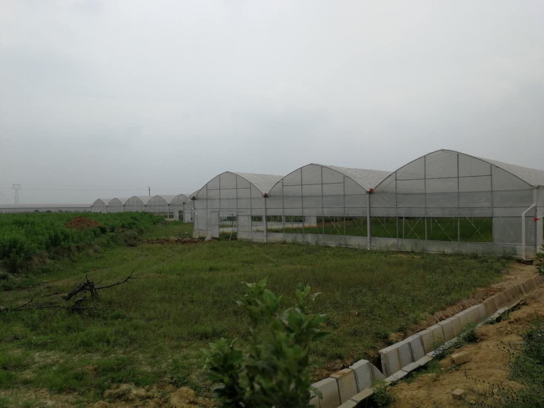 """徜徉""""农业海洋"""" 全国网媒参观印智航天农业产业园(图)"""