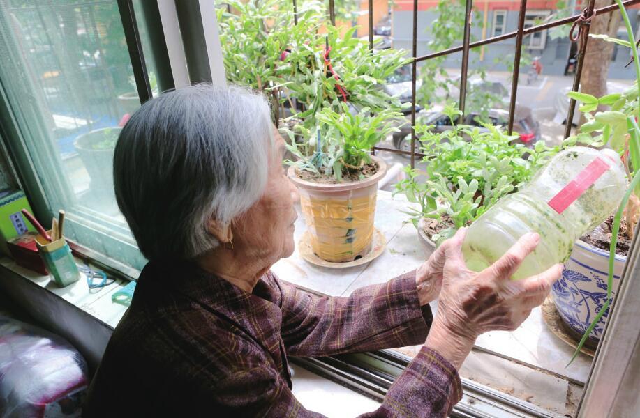 周泉:爱喝点红酒的95岁老太太