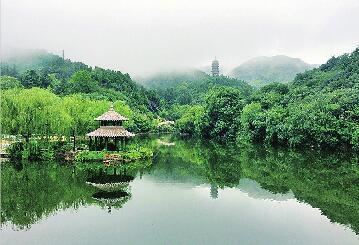 端午节来红叶谷避暑赏花吧!