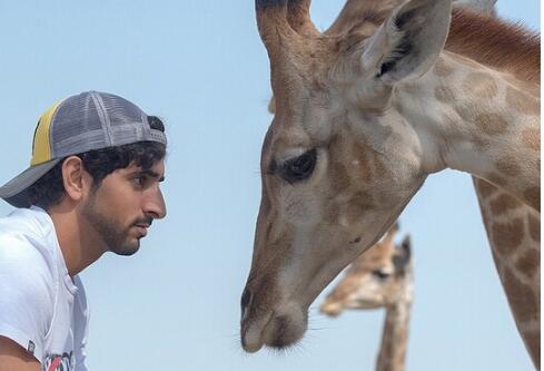 金粉世家!迪拜王子奢侈的豪华生活 没有想不到只有你不知道