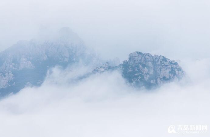 夏日崂山雾海美景 巨峰仿佛泡在了牛奶中