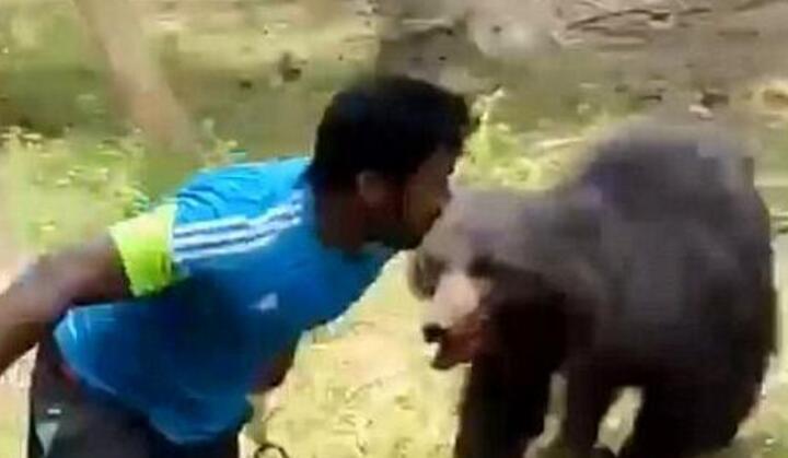 熊!印度黑熊咬死1对夫妇又重伤7人 终被村民打死