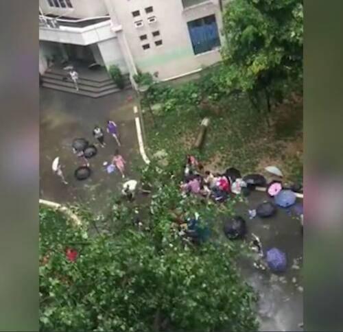 都是女汉子!高校老师被树砸倒在女生宿舍门口 女生暴雨中丢伞搬树