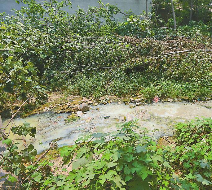 """三""""排污""""点地处郊区村庄尚无配套管线 污水处理不达标就直排玉符河"""