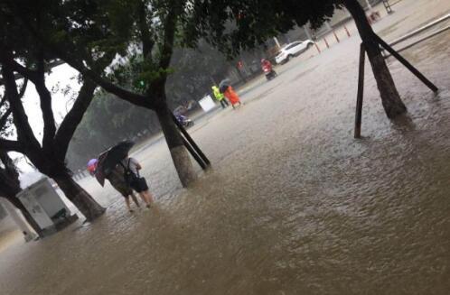 普降暴雨城区积水!四川绵阳发生洪水 老城区积水已经淹至腰部