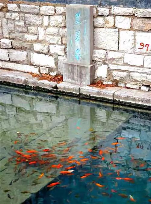 一池新绿芙蓉水 风清水洌芙蓉街